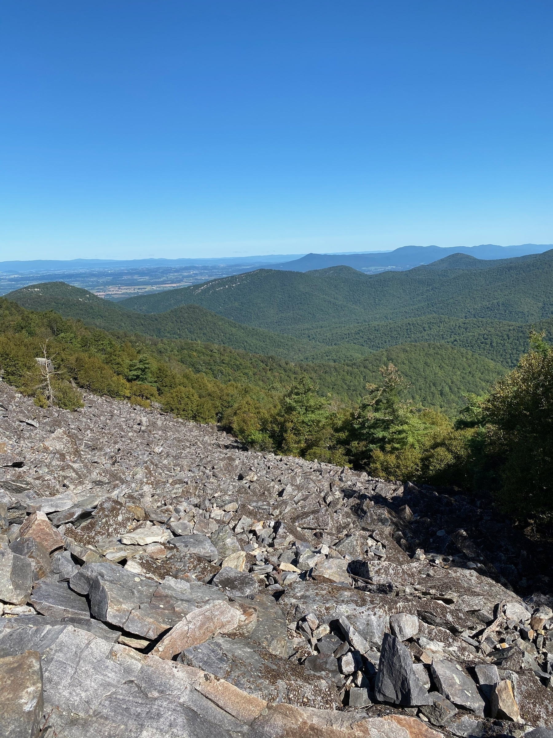 Another picture of Blackrock Summit looking at the valley to the northwest below.